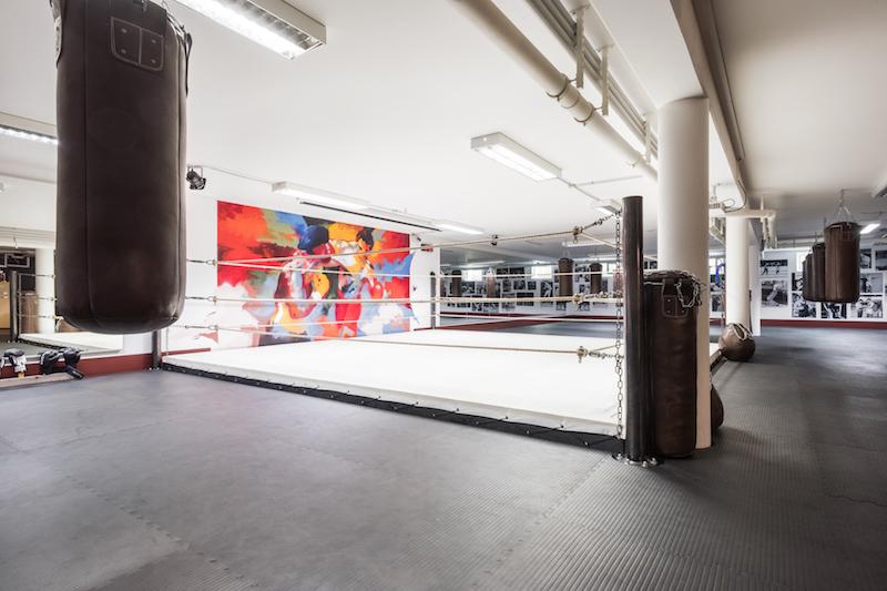 Kampfsport für Frauen - der Ring in der Boxschule Dachau